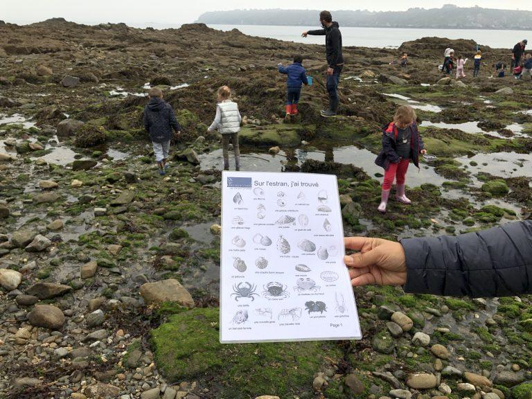 Découverte de la nature et du milieu marin. Et si vous essayiez l'école hors les murs avec Bretagne vivante ?