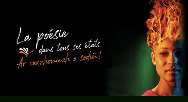 Une affiche de mauvais goût pour le Festival du livre en Bretagne de Carhaix ?