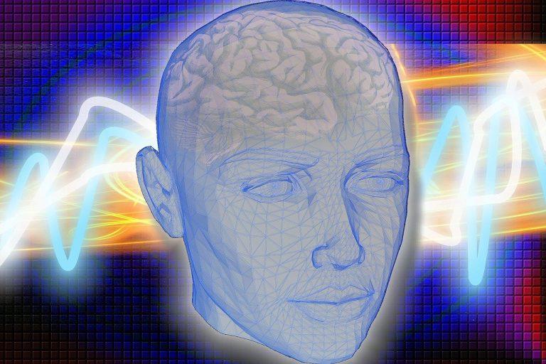 Santé. Un nouvel organe découvert au milieu de la tête ?
