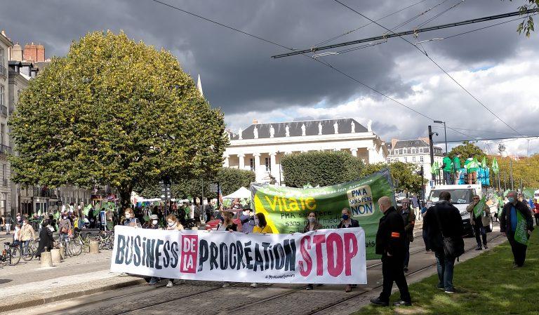 Manifestation anti-PMA/GPA à Nantes