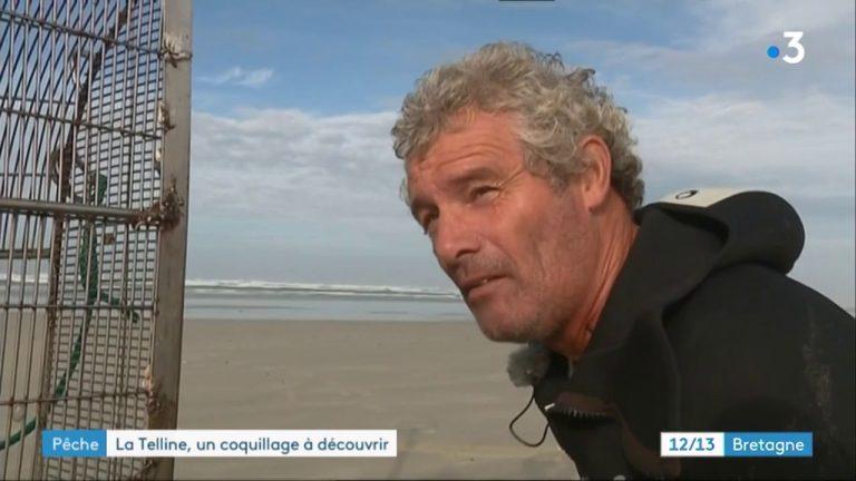 Pêche à la telline dans le sud-Finistère