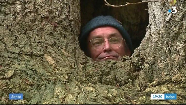 Fouesnant : indigné par la gestion du système de santé, un médecin se confine dans un arbre