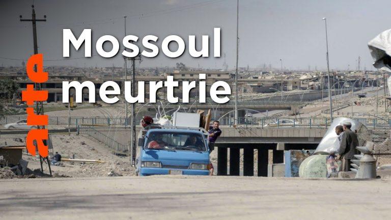 Irak. Mossoul, après la guerre