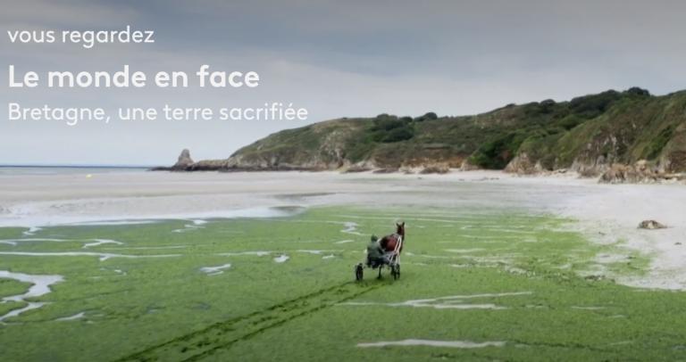 « Bretagne, une terre sacrifiée». Un reportage choc sur les Algues vertes et les conséquences du modèle agricole et industriel breton