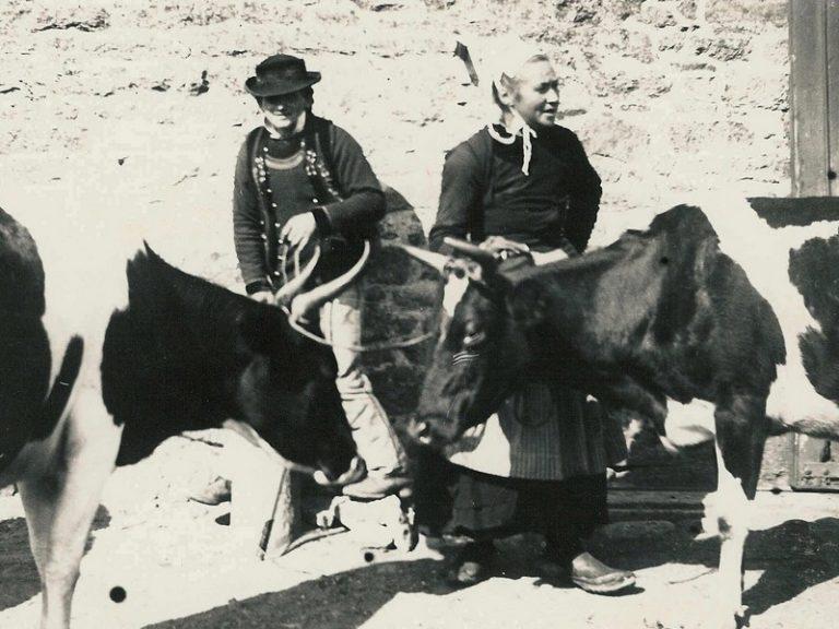 Éloge des marchands de vaches et pas des marchands d'chevaux