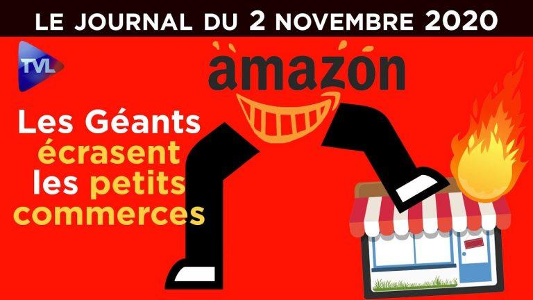 Le gouvernement contre les petits commerçants (JT de TV Libertés)