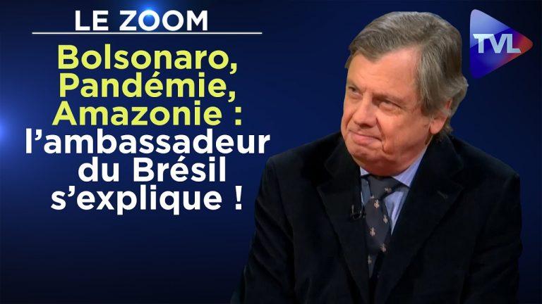 Bolsonaro, Pandémie, Amazonie : l'ambassadeur du Brésil s'explique !