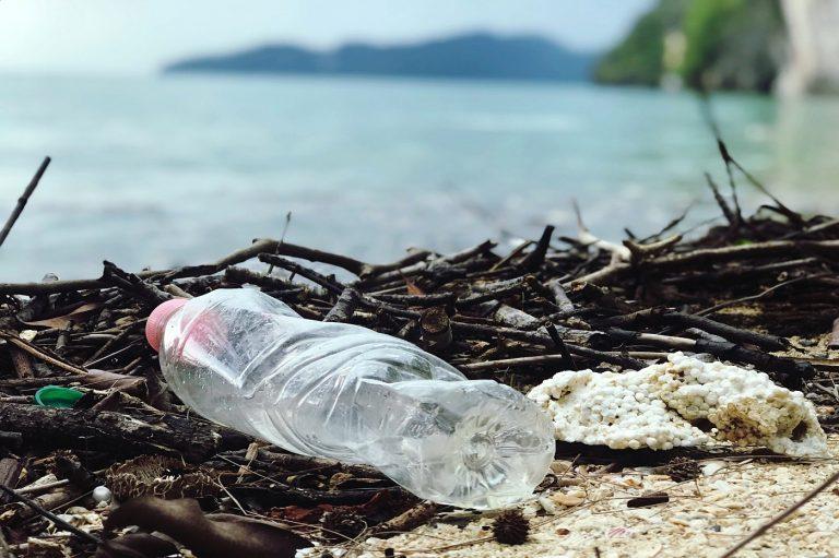 Un impératif pour la Bretagne: la protection de l'environnement, et particulièrement de l'océan