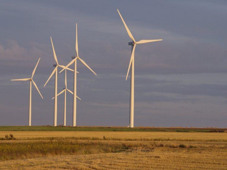 Fabien Bouglé : «  Nous assistons avec les éoliennes à un immense hold-up planétaire » [Interview]