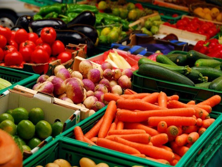 Jans, St Molf, Sévérac : les marchés ruraux reprennent de l'allant