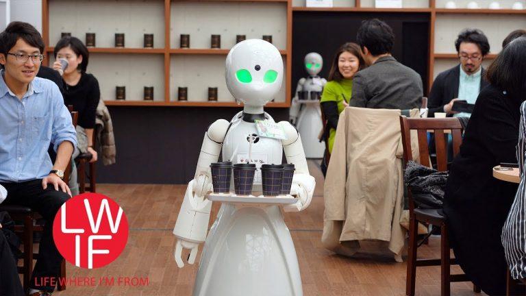 Pour éviter le recours à l'immigration, le Japon en pointe dans la robotisation [Vidéo]