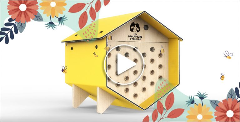 Les Dorloteurs d'Abeilles : comment devenir un protecteur des abeilles sauvages ?