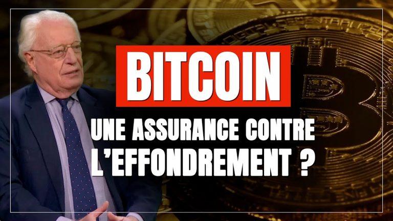 Bitcoin : une assurance contre l'effondrement ?
