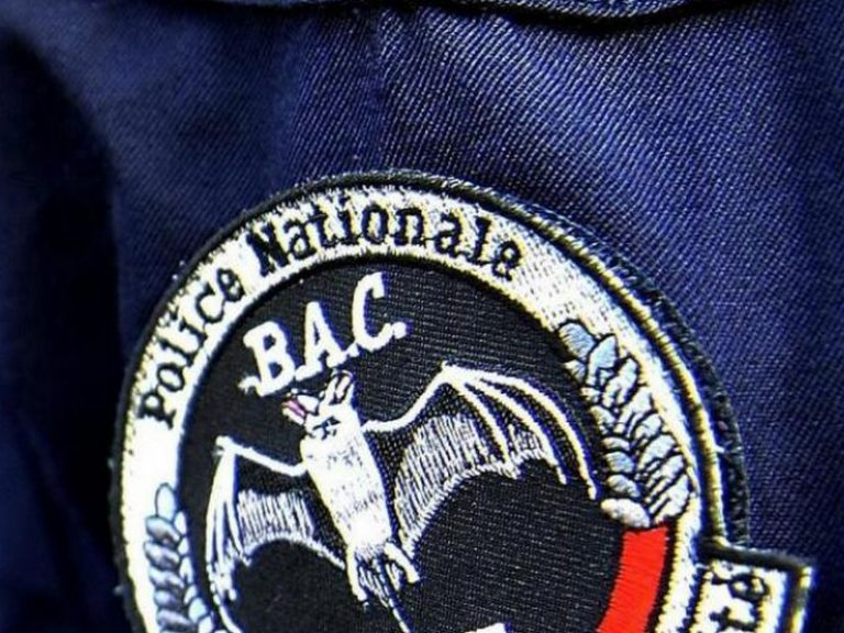 Nantes. Port Boyer : la BAC démantèle deux trafics de drogue pour le prix d'un
