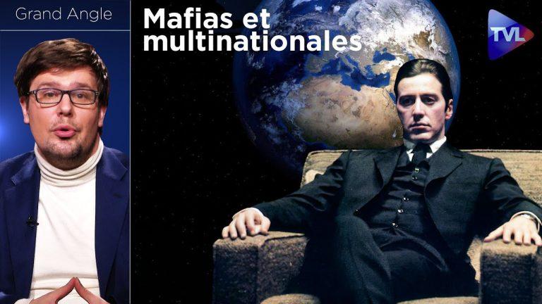 Mafias et multinationales : vers une planète bananière ?