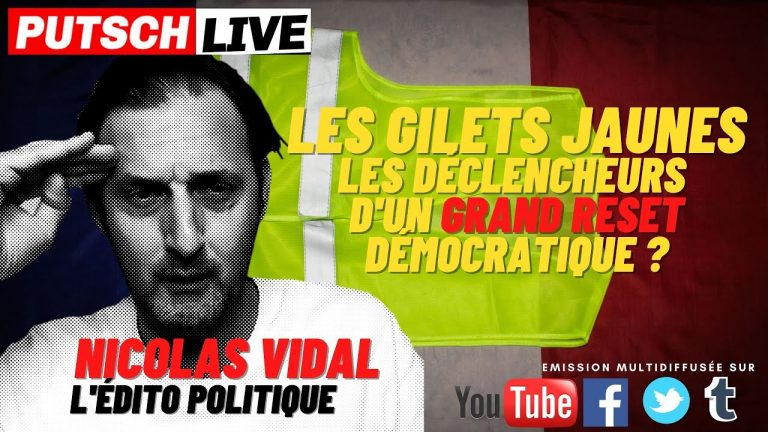 Les Gilets Jaunes, les déclencheurs d'un Grand Reset démocratique ?
