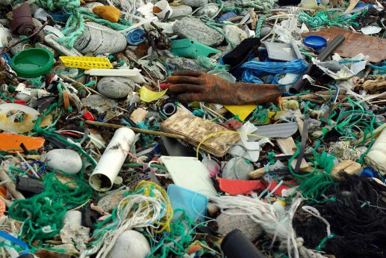 Pollution maritime. Ifremer invite le public à signaler les déchets d'engins de pêche via l'application Fish & Click [Vidéo]