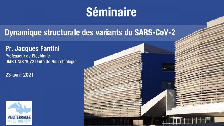 Dynamique structurale des variants du SARS-CoV-2