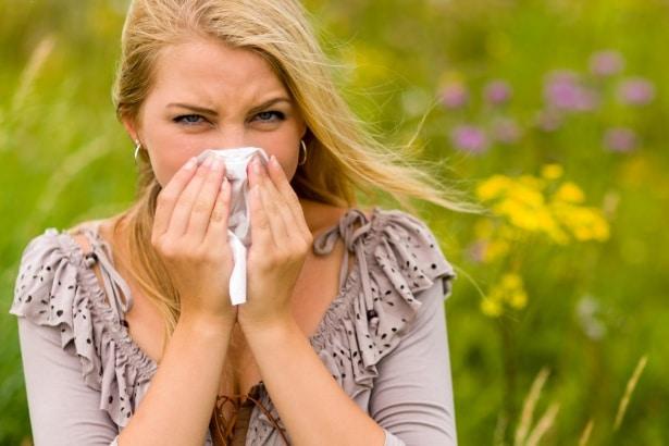 Santé. Le rhume des foins empoisonne la vie de plus en plus de Français