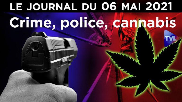 Crime, cannabis et police, l'Etat coupable
