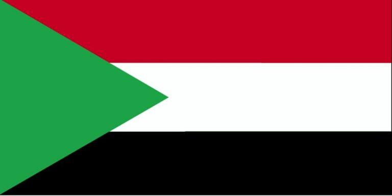 Dette du Soudan. E. Macron va prendre 60 euros dans la poche de chacun des Français