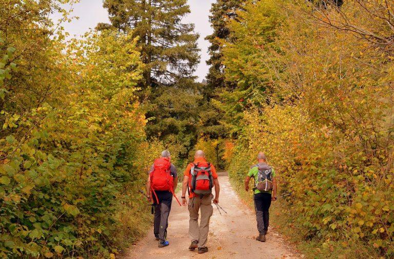 La semaine de la randonnée en Pays de Quimperlé, du 12 au 18 juin