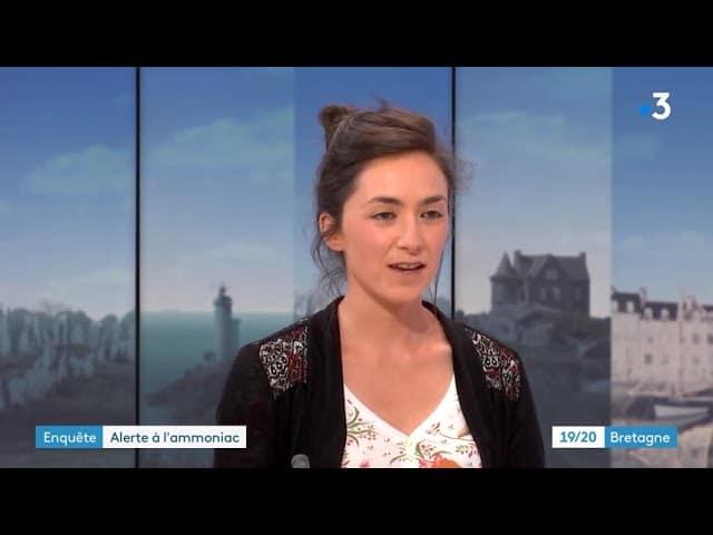 La Bretagne, malade de l'ammoniac. l'enquête de Splann !