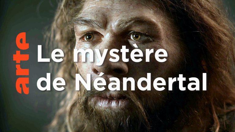 Histoire. À la rencontre de Néandertal