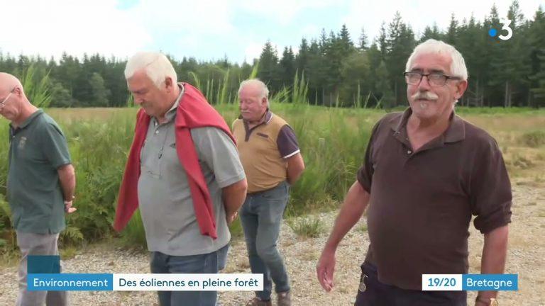 Forêt de Lanouée (Morbihan) : le chantier du parc éolien va reprendre
