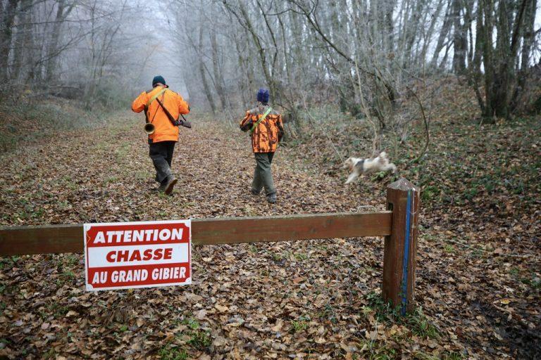 La chasse, une pratique fondamentale afin de planter les forêts de demain